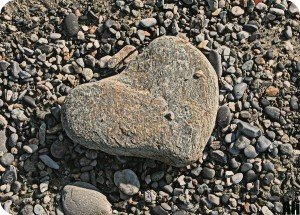 come una pietra