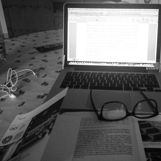 blogging di nicchia